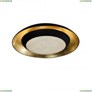2114-2C Потолочный светодиодный светильник Favourite (Фаворит), Spiegel Black