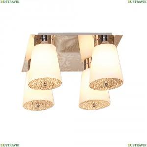 CL134141 Люстра потолочная CITILUX (Ситилюкс) Омега