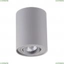 3831/1C Потолочный светильник Odeon Light (Одеон Лайт), Pillaron