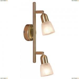 CL506522 Светильник настенно-потолочный CITILUX Ронда