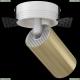 C058CL-1WG Встраиваемый светильник Maytoni (Майтони), Focus S