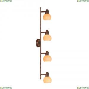 CL516543 Светильник настенно-потолочный CITILUX (Ситилюкс) Бонго