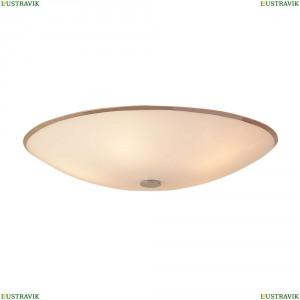 CL911502 Светильник настенно-потолочный CITILUX (Ситилюкс) 911