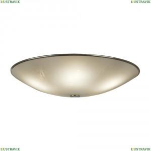 CL911503 Светильник настенно-потолочный CITILUX (Ситилюкс) 911