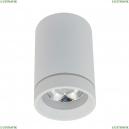 APL.0054.09.10 Накладной светодиодный светильник APLOYT (Аплойт), Edda
