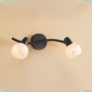 CL520525 Светильник настенно-потолочный CITILUX (Ситилюкс) Соната