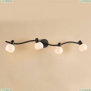 CL520545 Светильник настенно-потолочный CITILUX (Ситилюкс) Соната