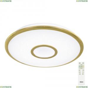 CL70342R Светильник настенно-потолочный светодиодный с пультом Золото CITILUX (Ситилюкс) СтарЛайт