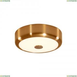CL706112 Настенно-потолочный светодиодный светильник CITILUX (Ситилюкс) Фостер 1