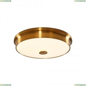 CL706232 Настенно-потолочный светодиодный светильник CITILUX (Ситилюкс) Фостер 2