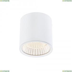 CL558070 Потолочный светодиодный светильник CITILUX (Ситилюкс), Стамп