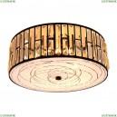CL331171 Потолочный светильник CITILUX (Ситилюкс), Гермес