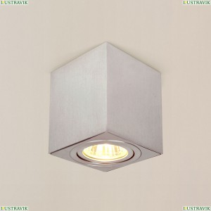 CL538210 Потолочный светильник CITILUX (Ситилюкс), Дюрен Алюминий