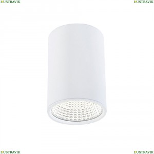 CL558100 Потолочный светодиодный светильник CITILUX (Ситилюкс), Стамп