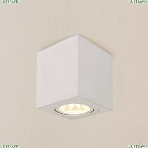 CL538211 Потолочный светильник CITILUX (Ситилюкс), Дюрен Белый