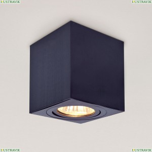 CL538212 Потолочный светильник CITILUX (Ситилюкс), Дюрен Черный