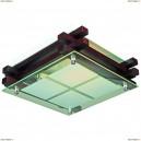 OML-40507-02 Светильник квадратный настенно-потолочный Omnilux, 2 лампы, черный (Омнилюкс)
