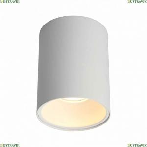 OML-101209-01 Светильник накладной точечный Omnilux (Омнилюкс), Cariano