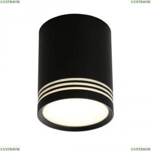 OML-100119-12 Светильник накладной точечный Omnilux (Омнилюкс), Fortezza
