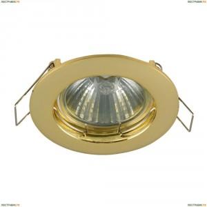 DL009-2-01-G Встраиваемый светильник Maytoni (Майтони), Metal