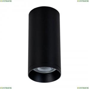 C010CL-01B Потолочный светильник Maytoni (Майтони), Alfa