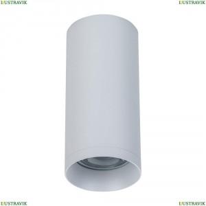 C010CL-01W Потолочный светильник Maytoni (Майтони), Alfa