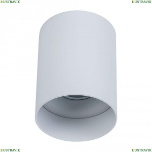C014CL-01W Потолочный светильник Maytoni (Майтони), Alfa