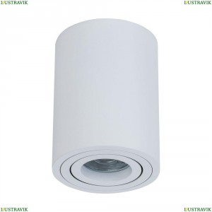 C016CL-01W Потолочный светильник Maytoni (Майтони), Alfa