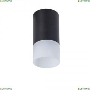 C007CW-01B Потолочный светильник Maytoni (Майтони), Pauline