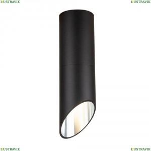 C025CL-01B Потолочный светильник Maytoni (Майтони), Lipari