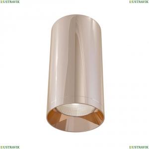 C010CL-01RG Потолочный светильник Maytoni (Майтони), Alfa