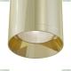 C010CL-01G Потолочный светильник Maytoni (Майтони), Alfa