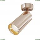C017CW-01RG Накладной точечный светильник Maytoni (Майтони), Focus