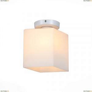 SL548.501.01 Настенно-потолочный светильник ST Luce (СТ Люче), Aspetto
