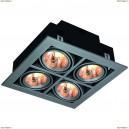 A5930PL-4SI Светильник потолочный Arte Lamp (Арте Ламп) CARDANI
