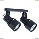 A6252PL-2BK Светильник потолочный Arte Lamp (Арте Ламп)