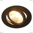 A6664PL-1BK Светильник потолочный Arte Lamp (Арте Ламп)