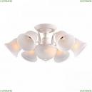 A6306PL-8WG Потолочная люстра Arte Lamp (Арте ламп), Campanula