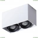 A5654PL-2WH Потолочный светильник Arte Lamp (Арте ламп), Pictor