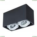 A5654PL-2BK Потолочный светильник Arte Lamp (Арте ламп), Pictor