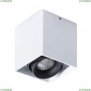 A5654PL-1WH Потолочный светильник Arte Lamp (Арте ламп), Pictor