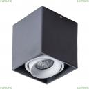 A5654PL-1BK Потолочный светильник Arte Lamp (Арте ламп), Pictor