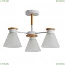 A1031PL-3WH Потолочная люстра Arte Lamp (Арте ламп), Tyler