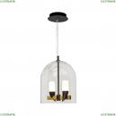 1028-2BL Подвесная светодиодная люстра LOFT IT (Лофт ИТ), Whisper