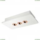 OL1072-WG/3 Потолочный светодиодный светильник LOFT IT (Лофт ИТ), Architect