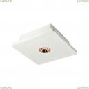 OL1072-WG/1 Потолочный светодиодный светильник LOFT IT (Лофт ИТ), Architect