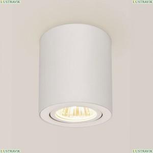 CL538111 Потолочный светильник Citilux (Ситилюкс), Дюрен Белый