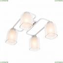 CL159240 Потолочный светильник Румба Citilux (Ситилюкс), Румба