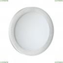3031/EL Настенно-потолочный светильник с пультом д/у Sonex (Сонекс), Asuno