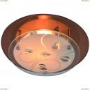 A4043PL-1CC Светильник настенно-потолочный Arte Lamp (Арте Ламп) 115